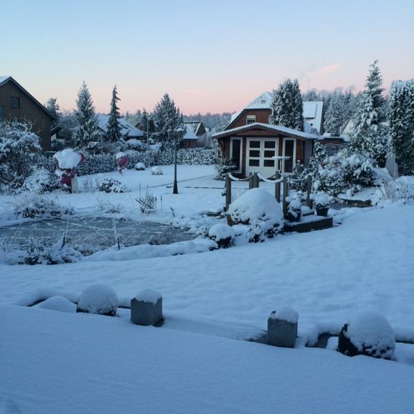 Eure Gartenbilder, Beete und Gestaltungsideen - Winter 2015 - Page ...