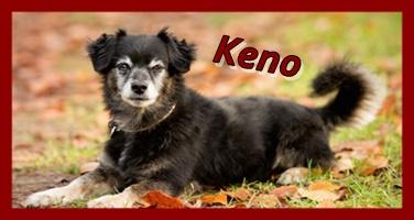 Keno 587