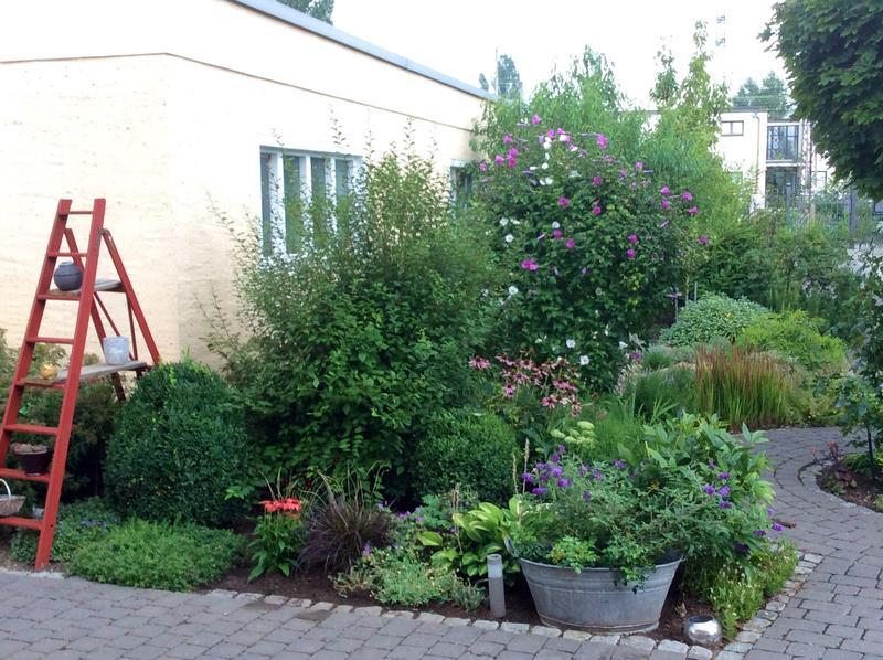 Bepflanzte zinkwanne seite 3 gartengestaltung mein for Gartengestaltung zinkwanne