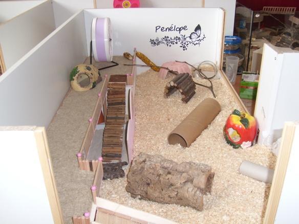 hamster durchfall