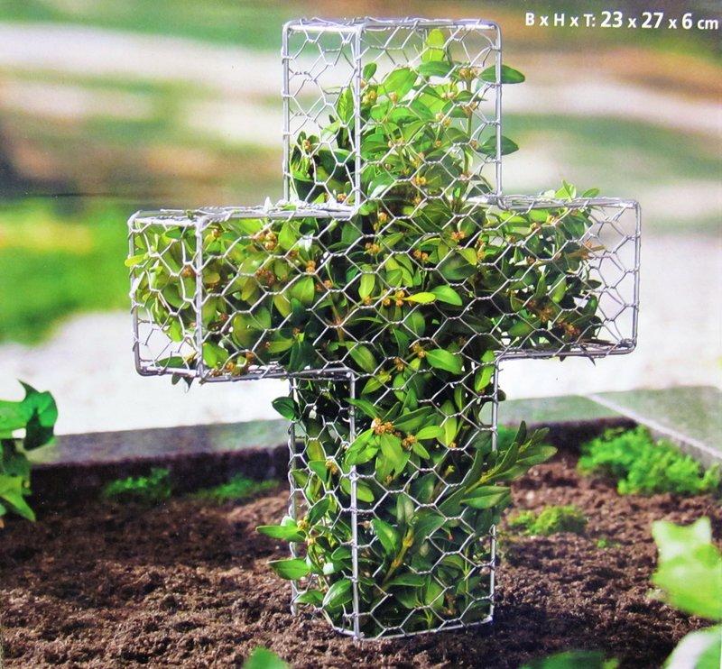 Buchsbaum former form kreuz grab neu garten pflanzen for Buchsbaume pflanzen