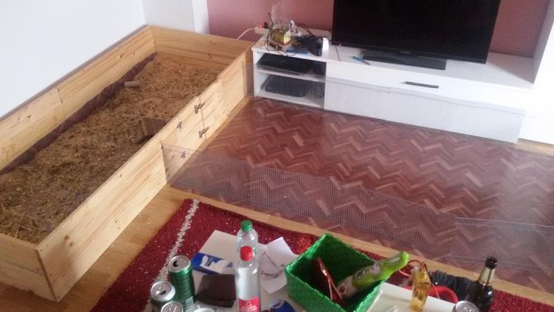 meerschweinchenk fig selber bauen meerschweinchen haltung. Black Bedroom Furniture Sets. Home Design Ideas