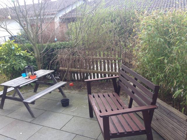 Kleinen Garten Aufhubschen Brauche Dringend Hilfe Mein