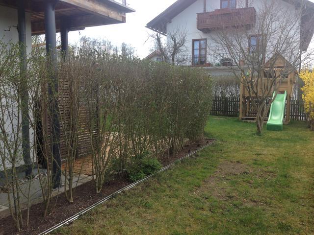Kleinen garten aufh bschen brauche dringend hilfe for Gartengestaltung zum nachbarn
