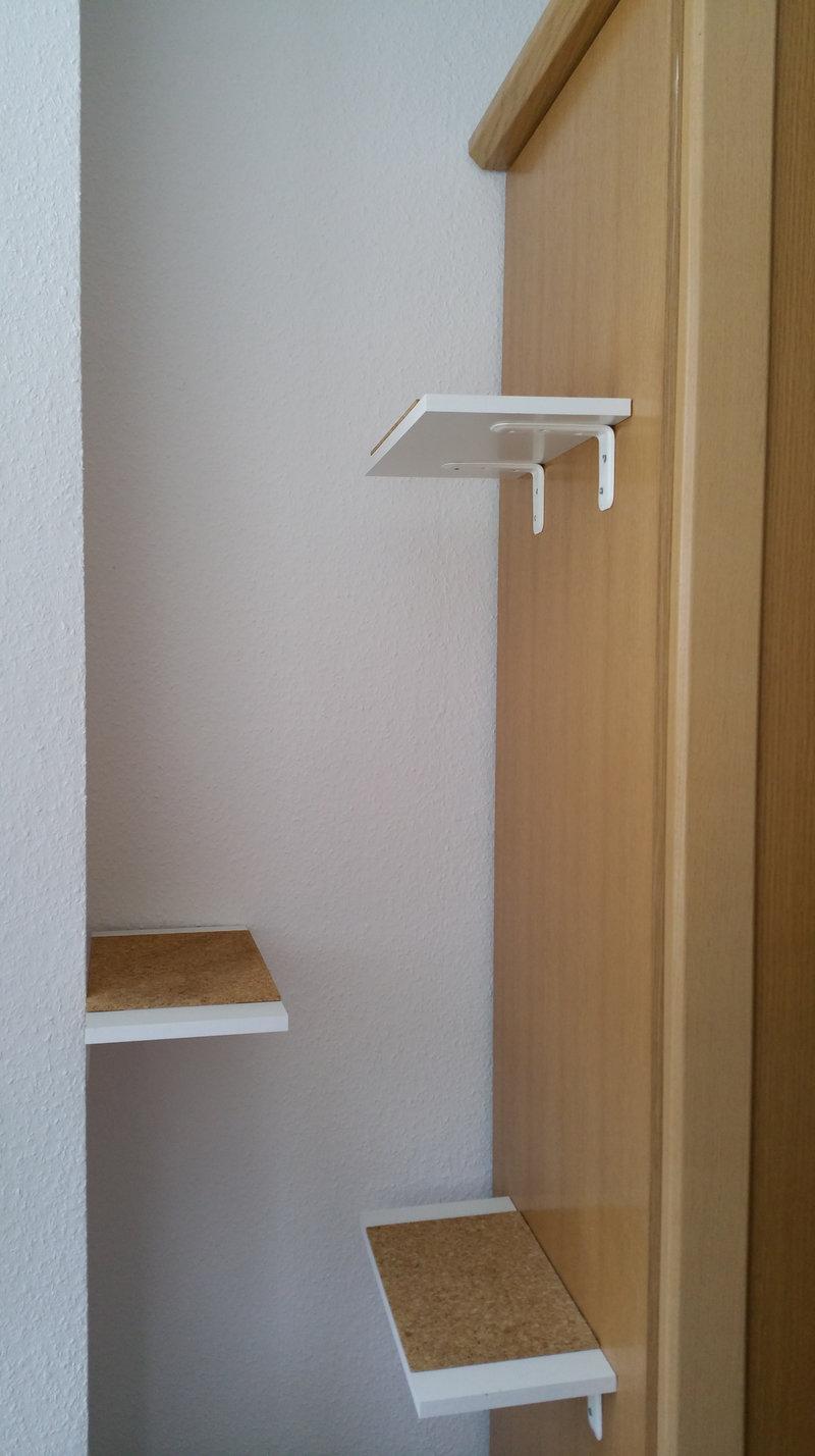 schmaler kratzbaum als aufstiegshilfe katzen forum. Black Bedroom Furniture Sets. Home Design Ideas