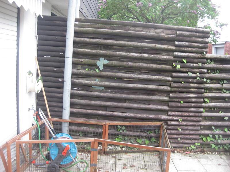 deko oder pflanzen f r die kleine terrasse im vollschatten mein sch ner garten forum. Black Bedroom Furniture Sets. Home Design Ideas
