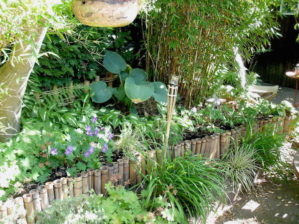 deko oder pflanzen f r die kleine terrasse im vollschatten. Black Bedroom Furniture Sets. Home Design Ideas