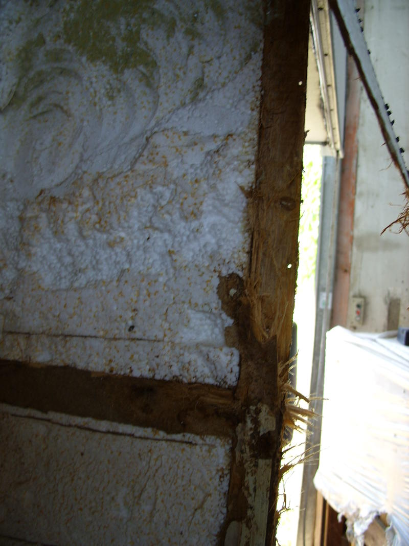 Knaus Traveller 630 Wasserschäden : - Wohnwagenforum