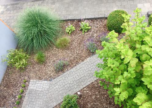 Vorgarten neu bepflanzen mein sch ner garten forum - Garten neu bepflanzen ...