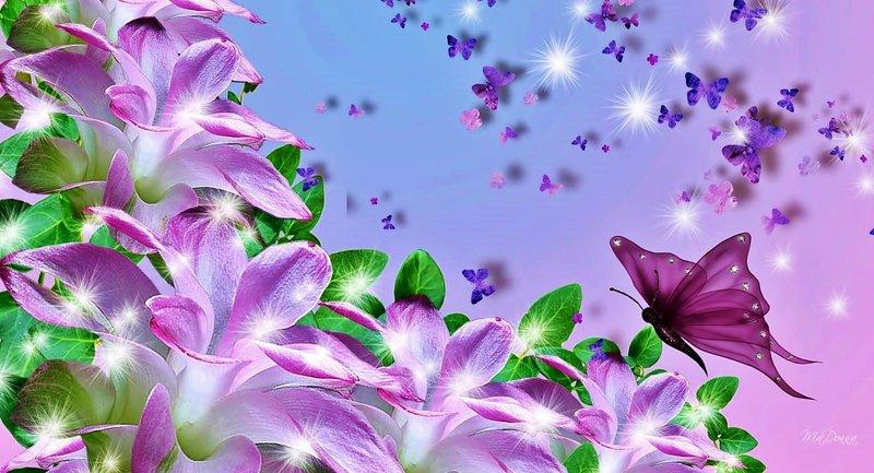 çok Güzel çiçekler Renkli çiçekler çiçek Resimleri Blumen Fotos