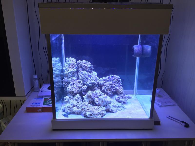Aus alt mach neu 60x60x60 100 bis 500 liter dein for Kampffisch becken