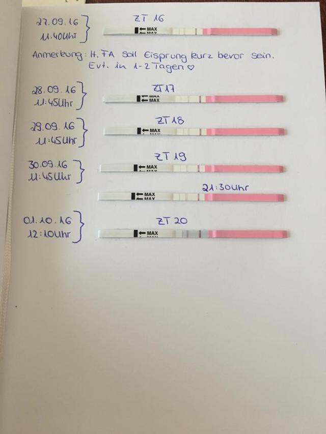 Am eisprung selben tag ovulationstest positiv Ovulationstest: Funktionsweise