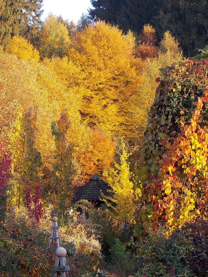 Eure Gartenbilder Beete und Gestaltungsideen Herbst 2016
