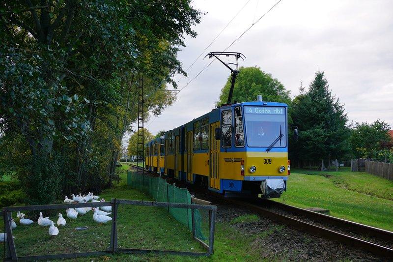 Straßenbahn Gotha und die Thüringerwaldbahn - Seite 3 27164566fg