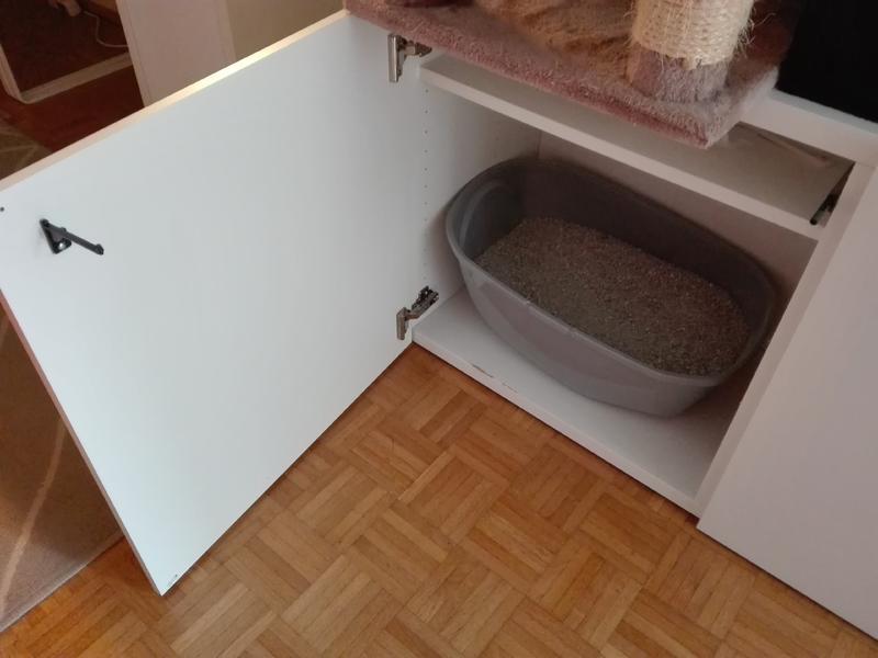 katze pinkelt seit monaten immer an die gleiche stelle seite 2 katzen forum. Black Bedroom Furniture Sets. Home Design Ideas