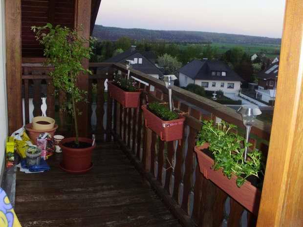 ein paar fragen hilfe f r balkon 39 sicherung 39 katzen forum. Black Bedroom Furniture Sets. Home Design Ideas