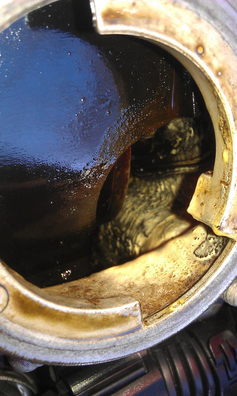 passat lpg wasser im motorenöl