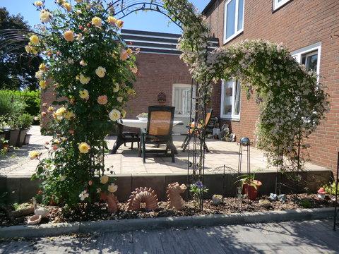 Herausforderung! Kleinstgärtchen 40 qm - Mein schöner Garten Forum