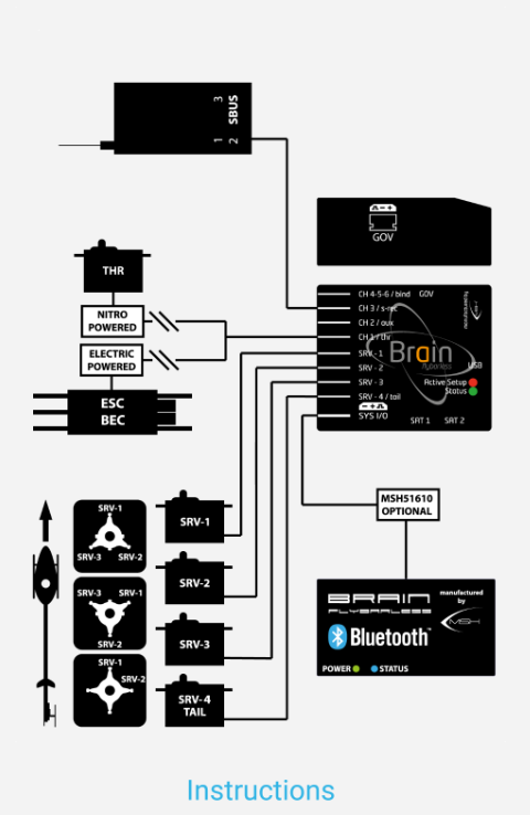 brain fbl system
