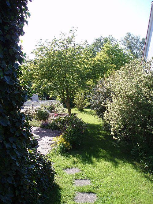 suche hausbaum der ca 4 meter hoch wird und breit. Black Bedroom Furniture Sets. Home Design Ideas