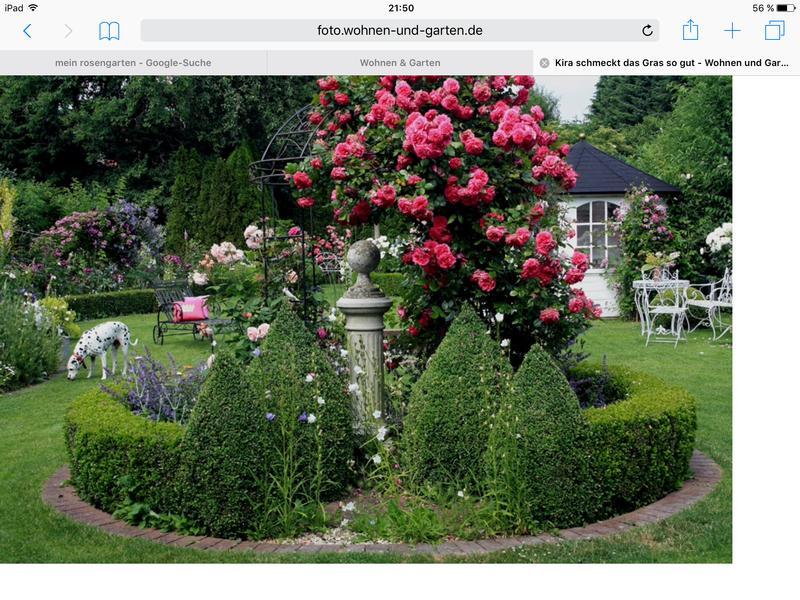... Mein Schöner Garten Forum. Download Image 800 X 600
