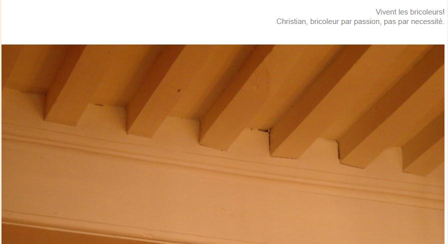 Plafonds en plafondafwerkingen