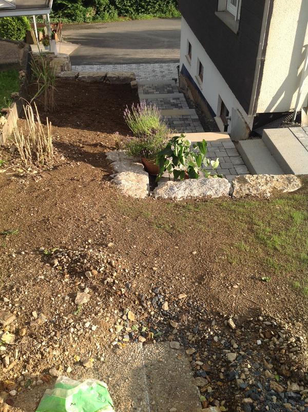 garten wird umgekrempelt neuer treppenaufgang entstehung und bepflanzungsideen mein. Black Bedroom Furniture Sets. Home Design Ideas