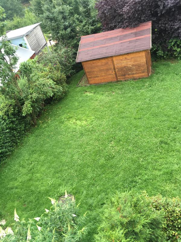 Aw:Naturnaher Garten Für Anfänger