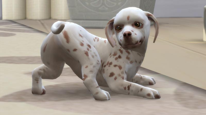 Die Sims 4: Hunde und Katzen - Das vierte AddOn für Die Sims