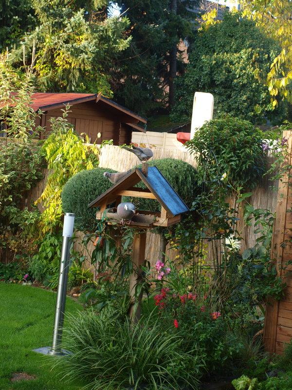 Biene\'s kleiner Garten - Mein schöner Garten Forum