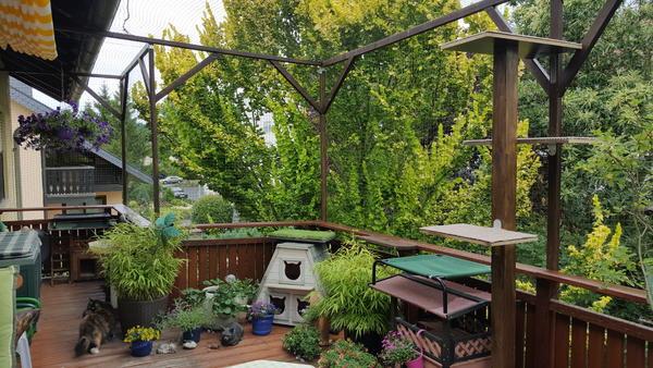 terrasse gartenteil katzensicher machen lassen welche firmen seite 17 katzen forum. Black Bedroom Furniture Sets. Home Design Ideas