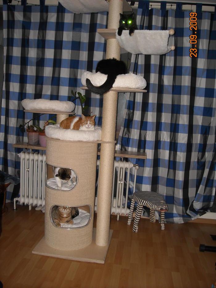 deckenspanner auch f r rigipsdecken geeignet haben uns den sonja von petfun bestellt. Black Bedroom Furniture Sets. Home Design Ideas