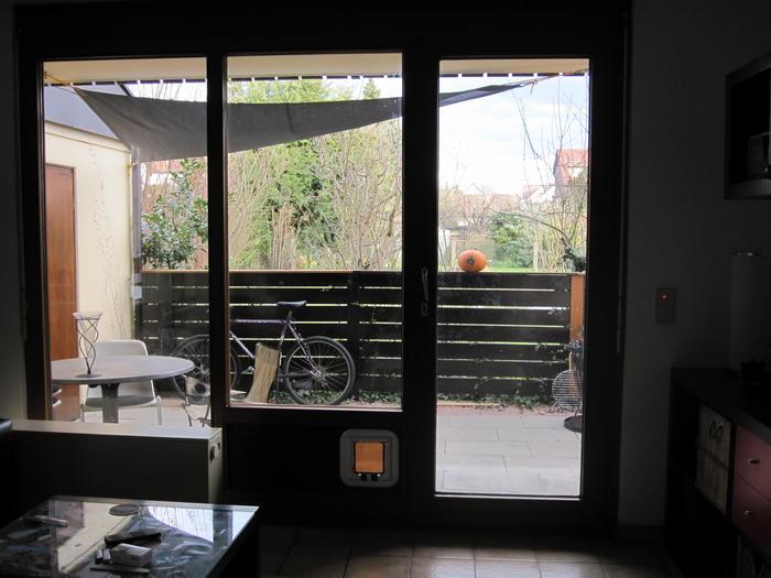 katzenklappe in glast r seite 2 katzen forum. Black Bedroom Furniture Sets. Home Design Ideas