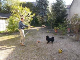 Roxy lebt jetzt glücklich in Ungarn! 33157813tr