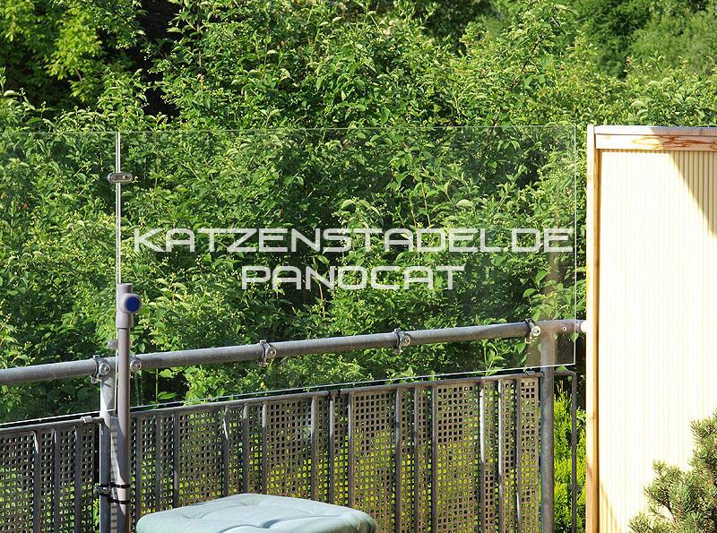 panocat fast unsichtbare katzensicherung spielen With katzennetz balkon mit wedgwood sarah s garden