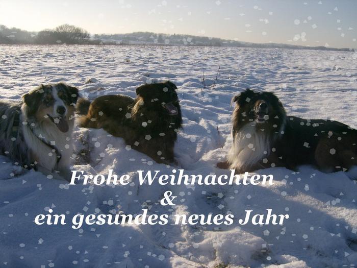 An den Beitrag angehängtes Bild: http://up.picr.de/3450359.jpg