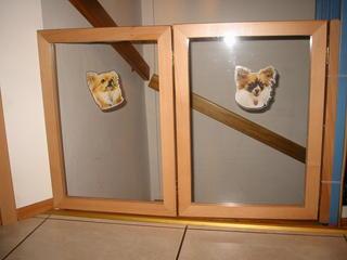 Hundegitter treppe