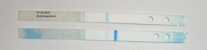 Clearblue Wochenbestimmung 1-2