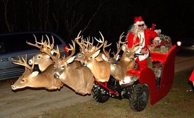Weihnachtsgrüße Jagdlich.Frohes Fest Den Foristisseite 2 Wild Und Hund