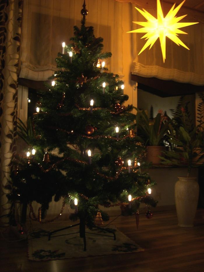 wer hat den sch nsten weihnachtsbaum 2010 smalltalk. Black Bedroom Furniture Sets. Home Design Ideas