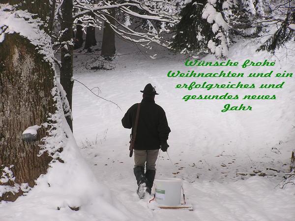 frohes fest den foristisseite 2 wild und hund