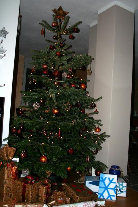weihnachtsbaum page 6 mein sch ner garten forum. Black Bedroom Furniture Sets. Home Design Ideas