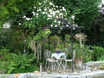 die sch nsten orchideen bilder seite 5 foto treff. Black Bedroom Furniture Sets. Home Design Ideas