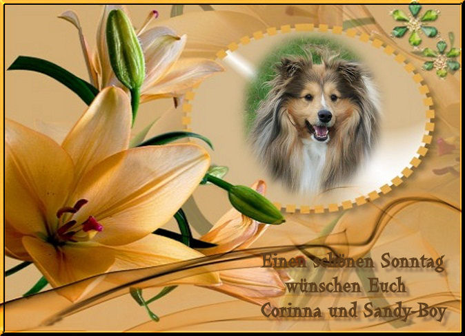 An den Beitrag angehängtes Bild: http://up.picr.de/6542127wkq.jpg