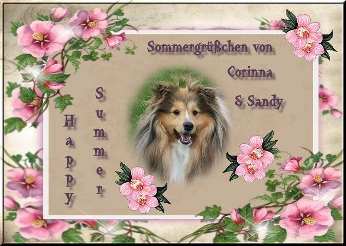 An den Beitrag angehängtes Bild: http://up.picr.de/6568755pqa.jpg