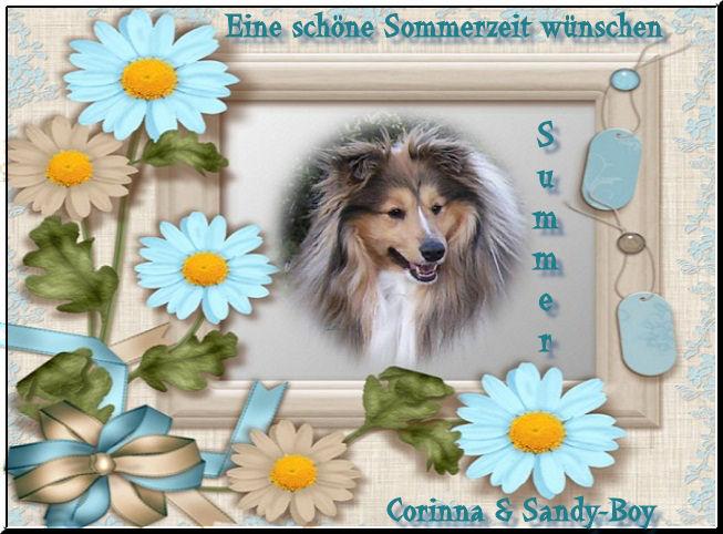 An den Beitrag angehängtes Bild: http://up.picr.de/6578174qkt.jpg