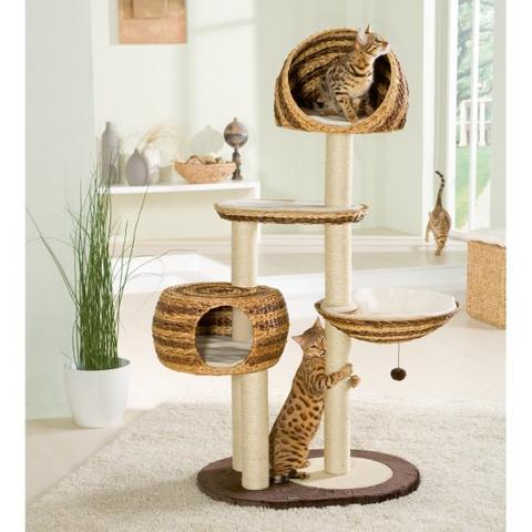 banana leaf kratzbaum paradise duo katzen forum. Black Bedroom Furniture Sets. Home Design Ideas
