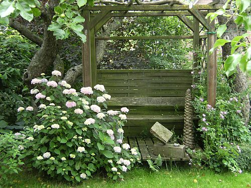 hortensie endless summer page 2 mein sch ner garten forum. Black Bedroom Furniture Sets. Home Design Ideas