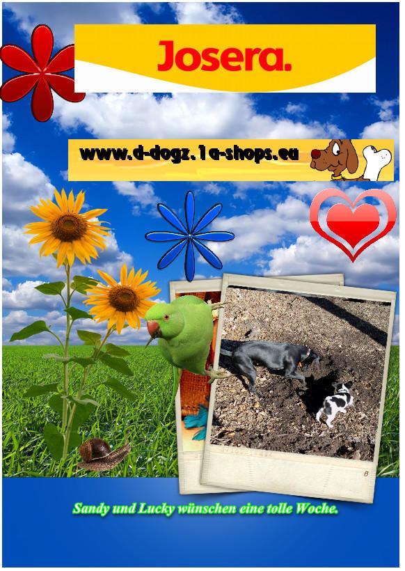 An den Beitrag angehängtes Bild: http://up.picr.de/7557633bwd.jpg