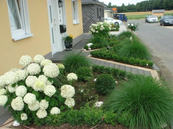 Mein Pflegeleichter Garten :   Teil 3  Seite 77  Gartengestaltung  Mein schöner Garten online
